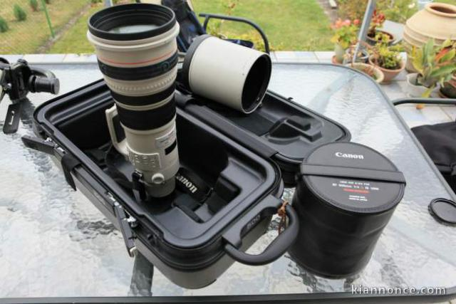 Canon EF 500 mm F4 L IS Usm